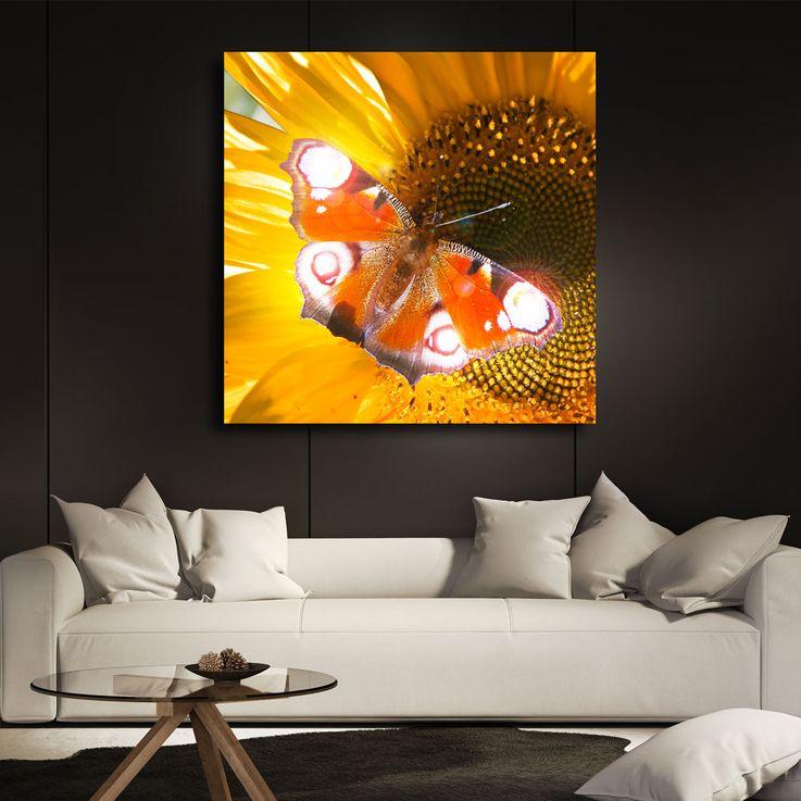 LED photo papillon mur décoration photo lumière éclairage image toile mur image chaud blanc Eglo 75037 – Bild 3