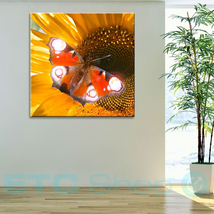 LED picture butterfly wall decoration picture light lighting picture canvas wall picture warm white Eglo 75037 – Bild 2