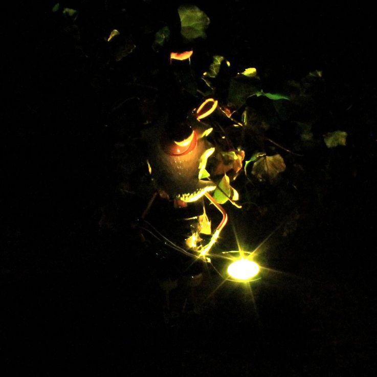 LED Solar Leuchte Gartenzwerg Lampe Deko Beleuchtung Garten Terrasse Eglo 47797 – Bild 5