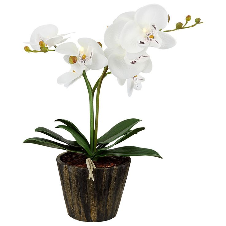 LED orchid flower pot table lamp with white flowers leaves art plant Globo 28002 – Bild 1