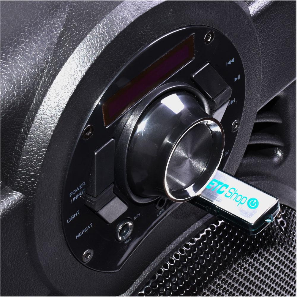 250W Mobile LED Musikanlage mit USB/Bluetooth und Mikro – Bild 3