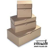 Klappdeckelbox 290x195x100 mm Innenmaß braun 50 Stück