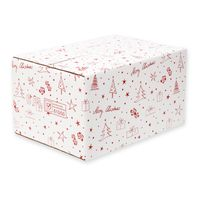 Weihnachtskartons Versandkartons Weihnachten 6er DHL/PTZ 10 Stück