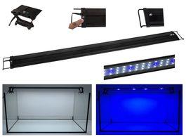R-30 LED Aquariumlampe für 30-45cm Aquarien blau/weiß  Bild 2
