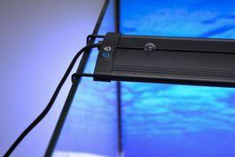 D-90 LED Aquariumlampe für 90-105cm Aquarien blau/weiß  Bild 8