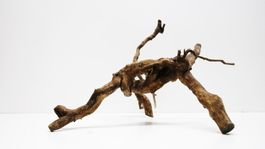 L Moorwoodwurzel braune Moorkienwurzel Maße 41x40x49 Nr.3283 Bild 4