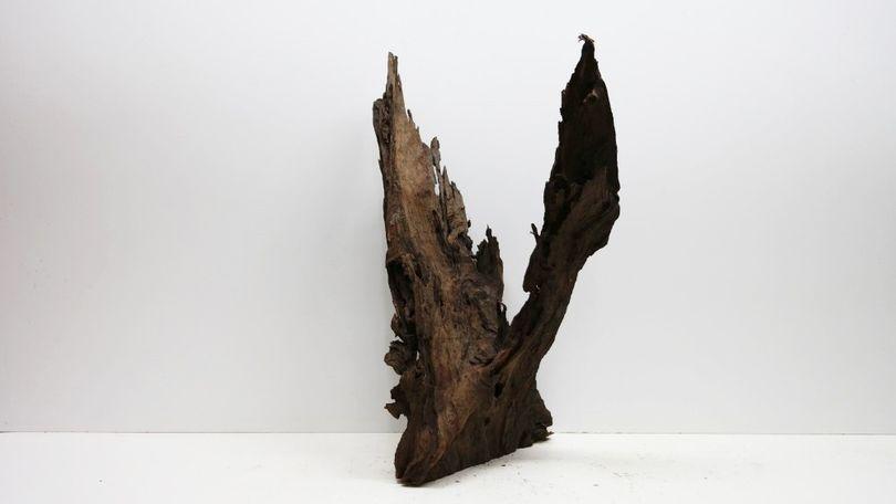 XXL Mangrovenwurzel Maße 88x50x63 Nr.3417 Bild 2