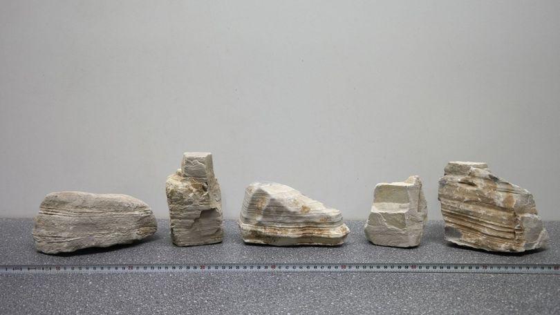 """Beige/weiße Aquarium Dekosteine Art.60 """"original Foto"""" Größe L 12-30cm Nr.3613"""