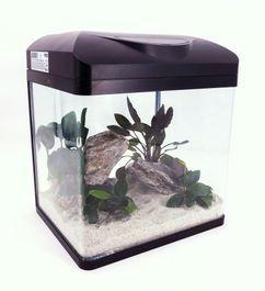 Nano Aquarium Laguna in schwarz Komplettaquarium +LED Beleuchtung +Filteranlage Bild 3