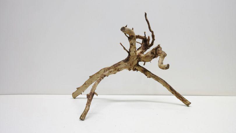 L Moorwoodwurzel braune Moorkienwurzel Maße 50x30x35 Nr.4079