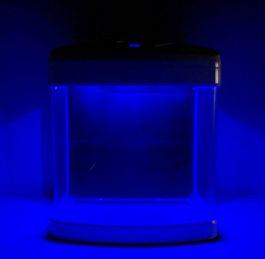 Nano Aquarium XCUBE in weiß inklusive Dekoration Bild 9
