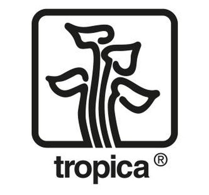 Spar-Set 3 Tropica Topf Pflanzen unserer Wahl Aquariumpflanzenset Nr.14