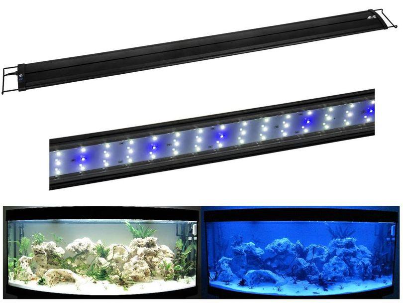 R-60 LED Aquariumlampe für 60-75cm Aquarien blau/weiß