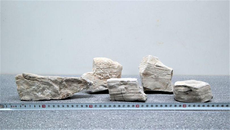 """Beige/weiße Aquarium Dekosteine Art.59 """"original Foto"""" Größe M 12-18cm Nr.5635"""