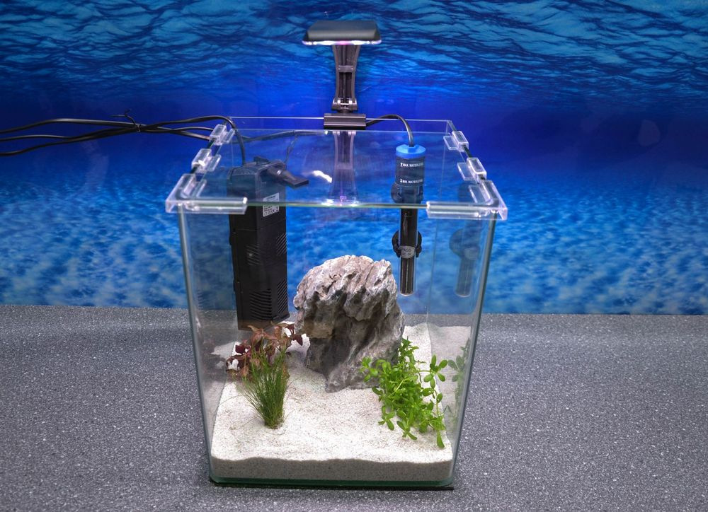 wave box cubo 25 nano aquarium inkl dekoration. Black Bedroom Furniture Sets. Home Design Ideas
