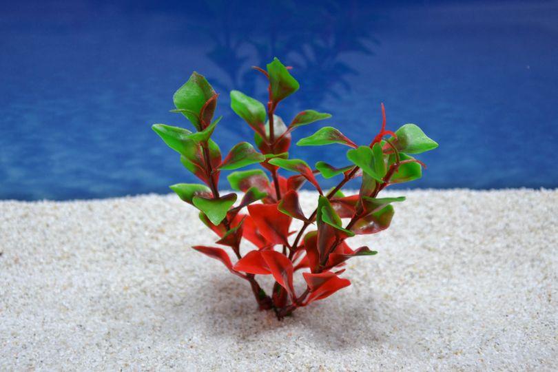Amtra Ludwigia S 12cm künstliche Pflanze Dekoration Aquarium