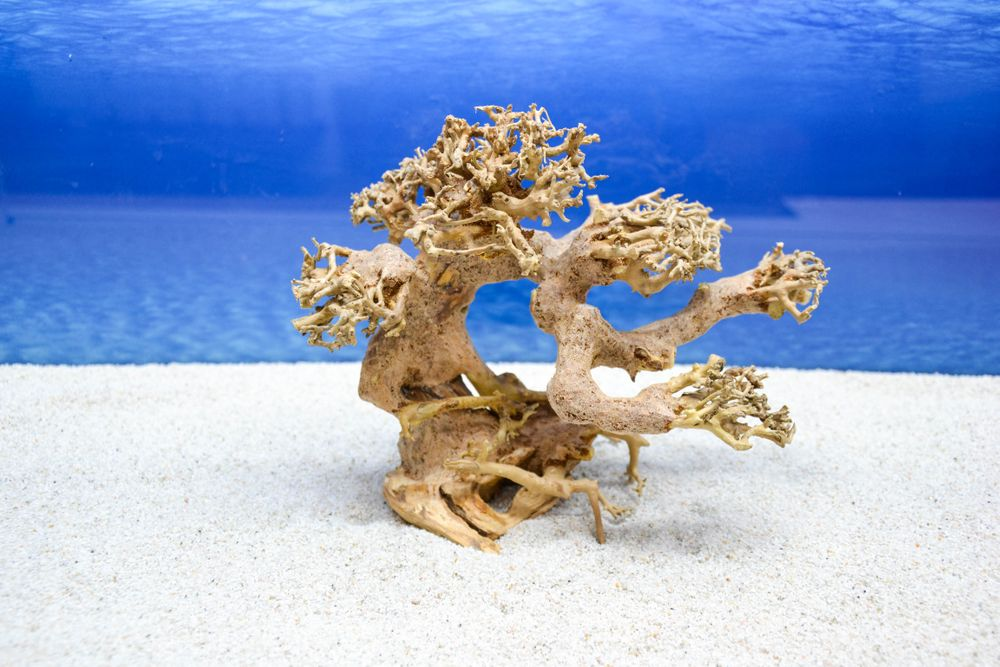 Bonsai baum m wurzel holz aquarium deko aquascaping wurzel for Holz deko aquarium