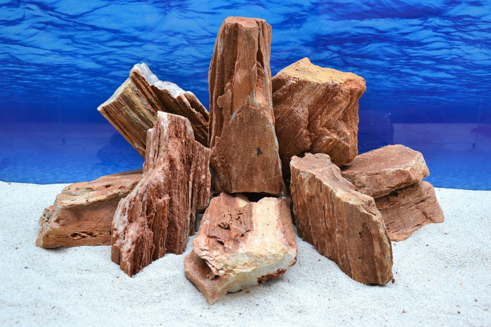 Pro stein aquarium deko versteinertes holz in rot braun 2 for Holz deko aquarium