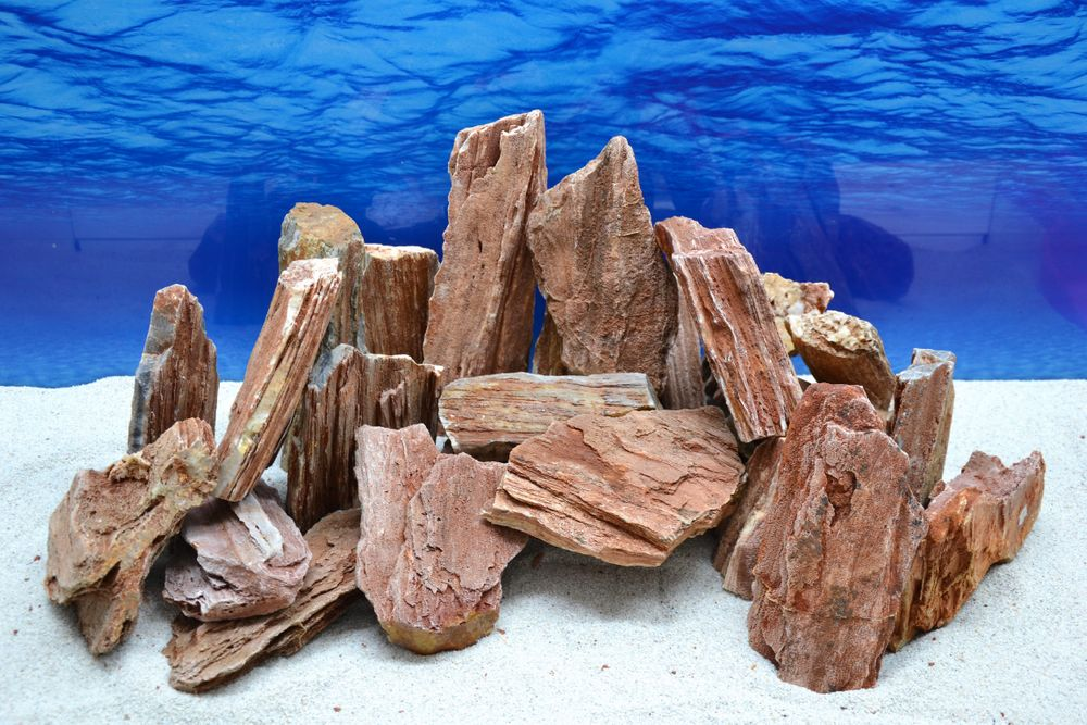 Aquarium deko natursteine versteinertes holz in rot braun for Holz deko aquarium