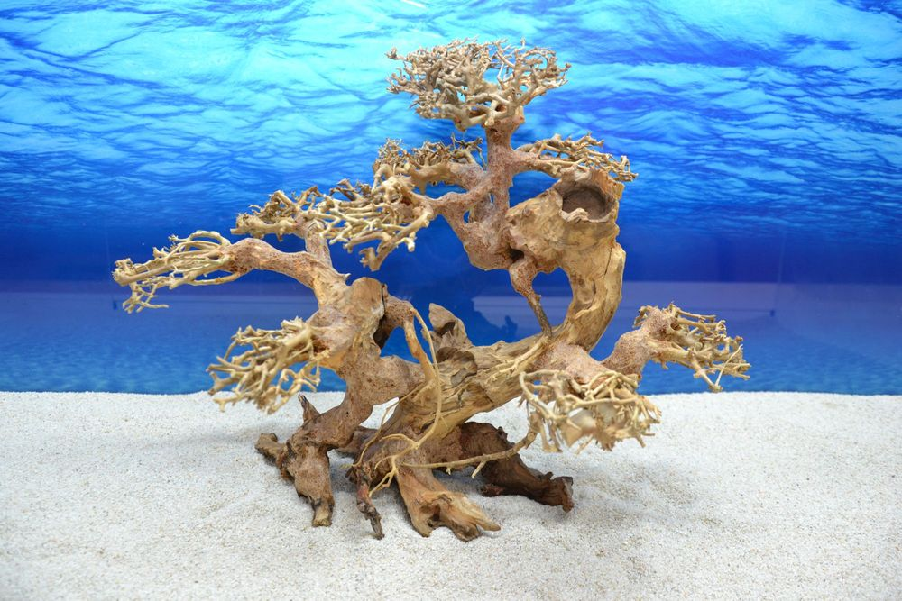 Bonsai baum xl wurzel holz aquarium deko aquascaping for Holz deko aquarium