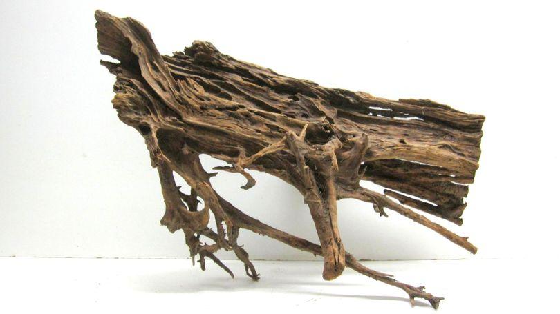 XXL Mangrovenwurzel Maße 96x49x38 Nr.6121