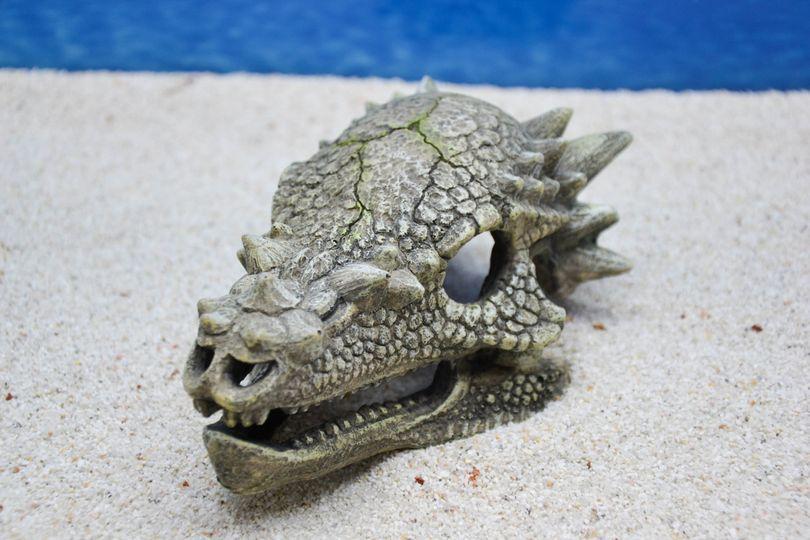 Amtra Drachen Schädel Aquarium-Deko
