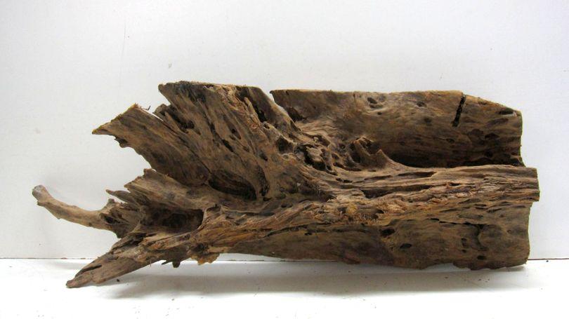XXL Mangrovenwurzel Maße 98x22x35 Nr.6164