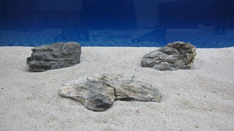 "Aquarium graue Dekosteine Seiryu Art.67 ""original Foto"" Größe M 12-18cm Nr.6392"