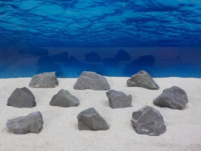 """Aquarium schwarze Dekosteine Art.65 """"original Foto"""" Größe M 12-20cm Nr.6511"""