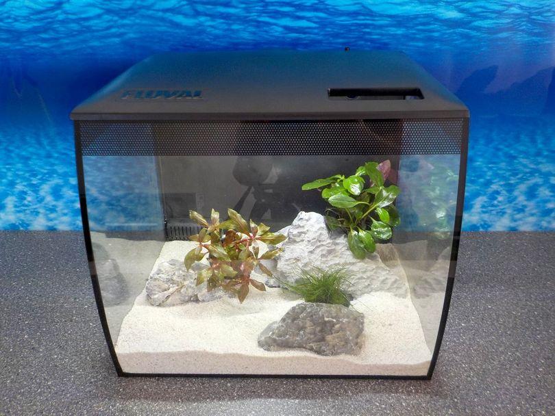 Fluval Flex 34l Nano Aquarium schwarz Komplettaquarium +Filteranlage +RGB Licht