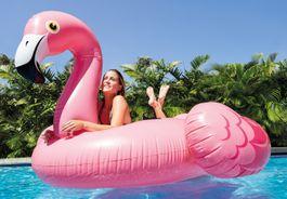 Steinbach - Mega Flamingo Island schwimmende Insel Pool Bild 1