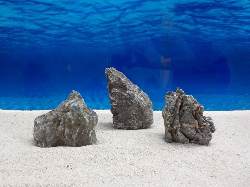 "Aquarium graue Dekosteine Seiryu Art.67 ""original Foto"" Größe M 12-18cm Nr.6666"