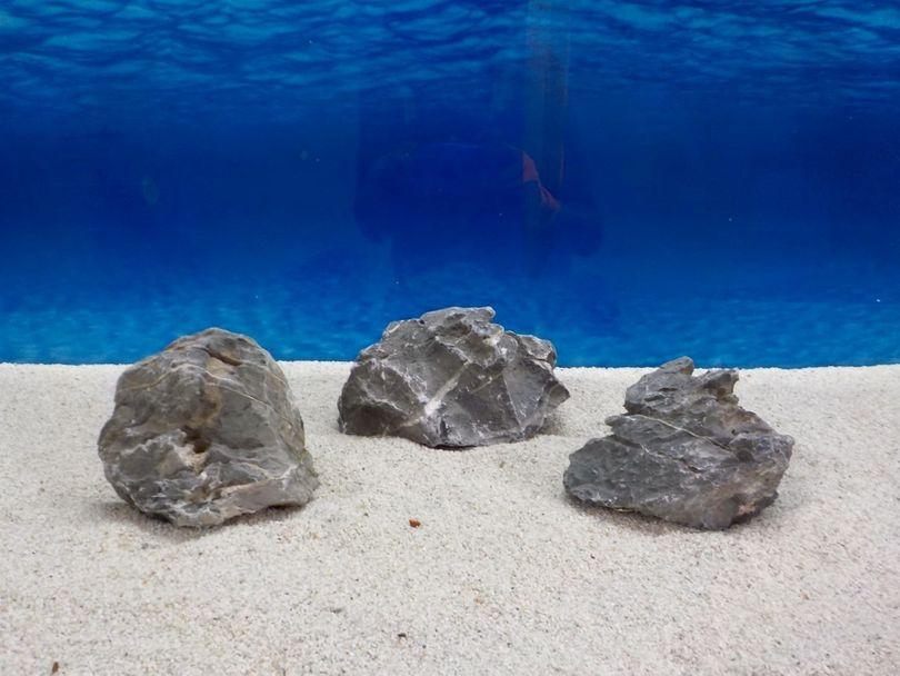 "Aquarium graue Dekosteine Seiryu Art.67 ""original Foto"" Größe M 12-18cm Nr.6679"