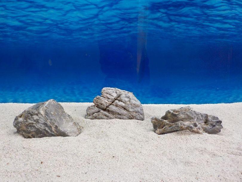 "Aquarium graue Dekosteine Seiryu Art.67 ""original Foto"" Größe M 12-18cm Nr.6683"