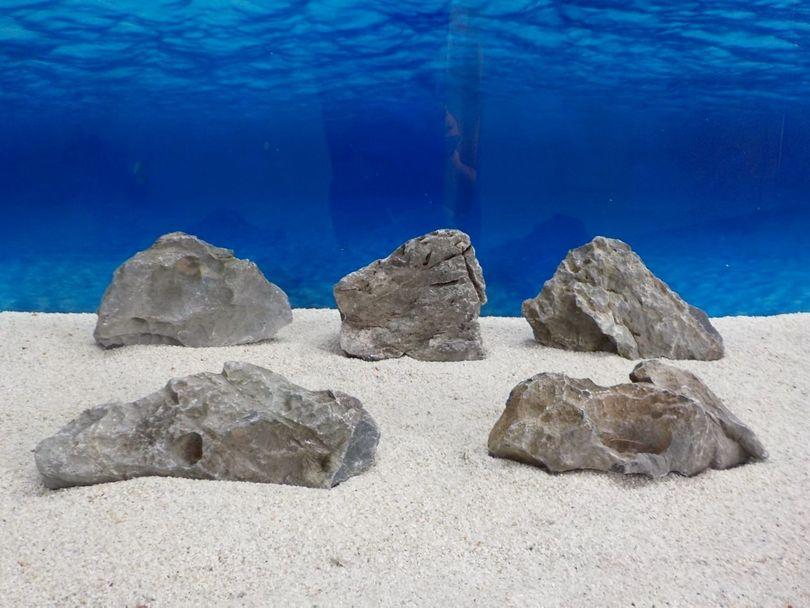 "Aquarium graue Dekosteine Seiryu Art.67 ""original Foto"" Größe M 12-18cm Nr.6687"
