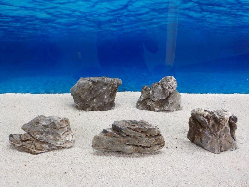 "Aquarium graue Dekosteine Seiryu Art.67 ""original Foto"" Größe M 12-18cm Nr.6695"