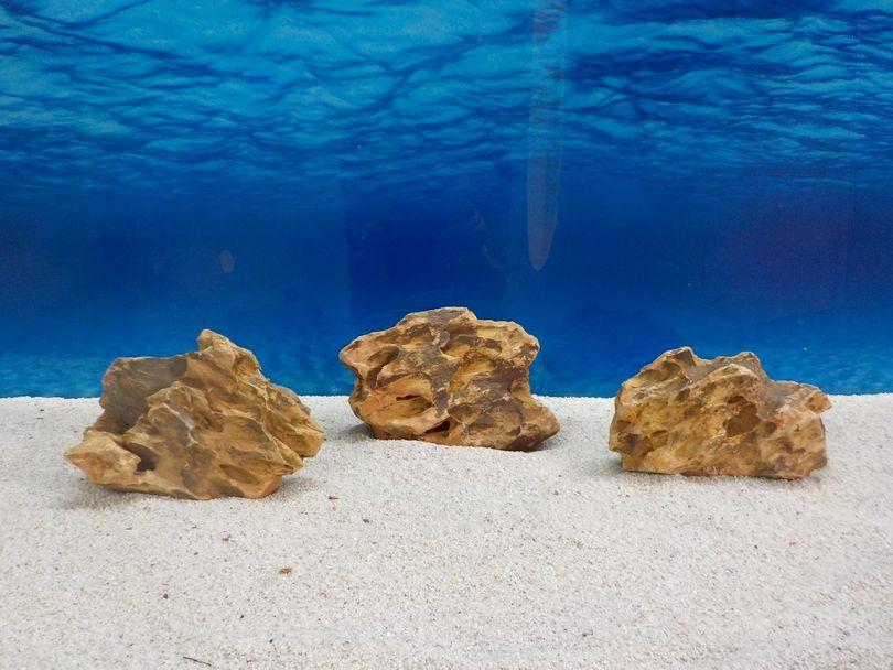 """Aquarium Drachenstein Dekosteine Art.62 """"original Foto"""" Größe M 10-18cm Nr.6714"""