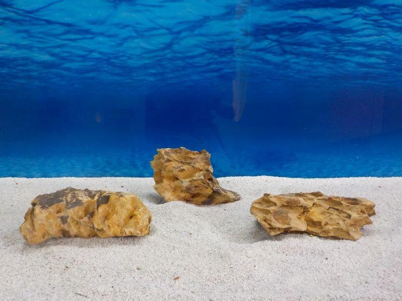 """Aquarium Drachenstein Dekosteine Art.62 """"original Foto"""" Größe M 10-18cm Nr.6721"""