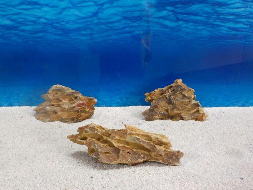 """Aquarium Drachenstein Dekosteine Art.62 """"original Foto"""" Größe M 10-18cm Nr.6723"""