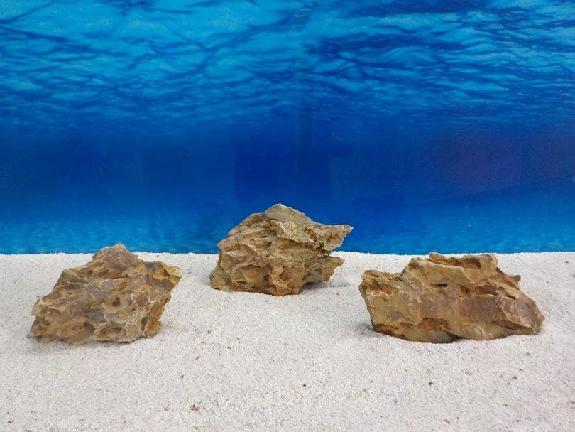 """Aquarium Drachenstein Dekosteine Art.62 """"original Foto"""" Größe M 10-18cm Nr.6725"""