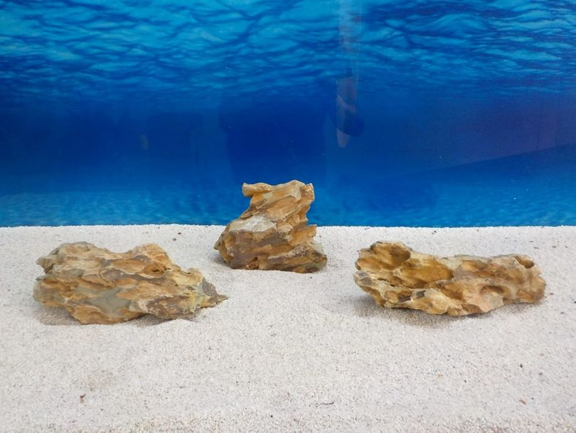"""Aquarium Drachenstein Dekosteine Art.62 """"original Foto"""" Größe M 10-18cm Nr.6733"""