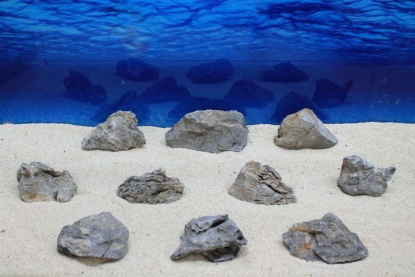 "Aquarium graue Dekosteine Seiryu Art.67 ""original Foto"" Größe M 12-18cm Nr.7610"