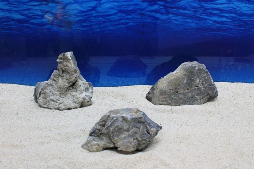 "Aquarium graue Dekosteine Seiryu Art.68 ""original Foto"" Größe L 12-35cm Nr.7625"