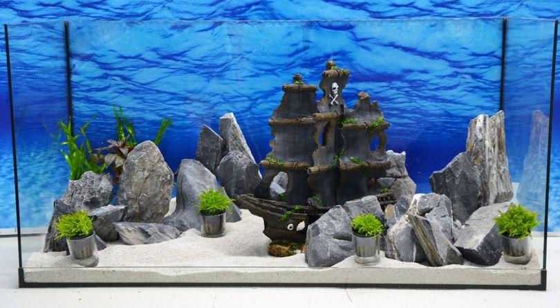 Aquarium Deko Komplettset Geisterschiff Steine Wasserpflanzen Aquascaping Nr.214