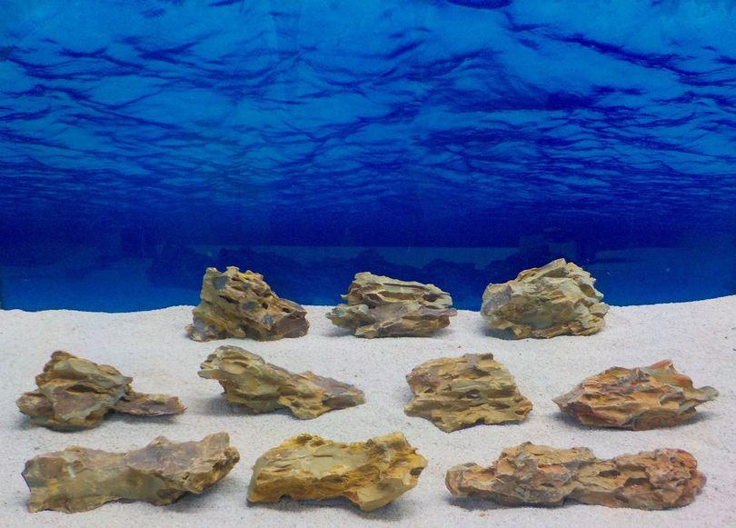"""Aquarium Drachenstein Dekosteine Art.62 """"original Foto"""" Größe M 10-18cm Nr.7689"""