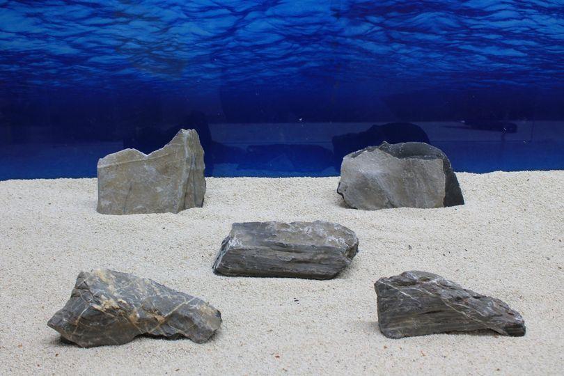 """Aquarium schwarze Dekosteine Art.65 """"original Foto"""" Größe M 12-20cm Nr.7714"""