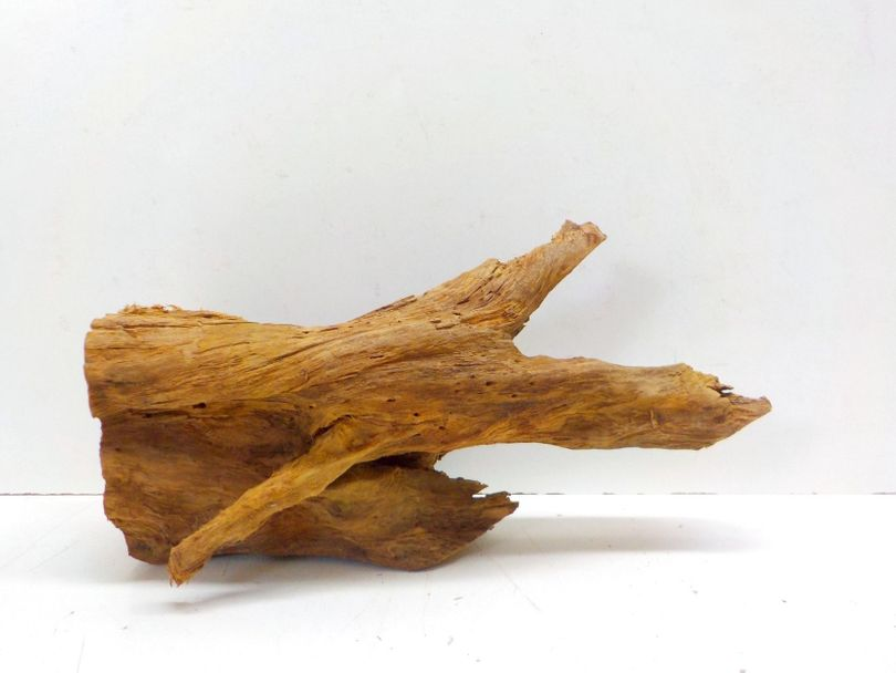 XL Mangrovenwurzel Maße 48x26x24 Nr.7994