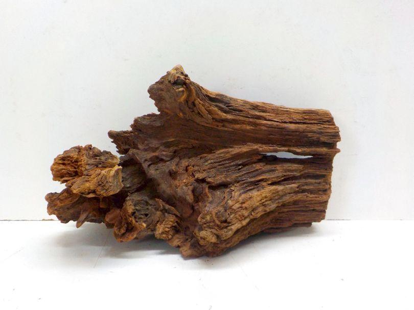 XL Mangrovenwurzel Maße 44x24x28 Nr.7997