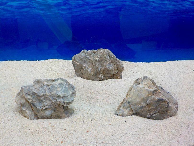 "Aquarium graue Dekosteine Seiryu Art.67 ""original Foto"" Größe M 12-18cm Nr.8239"