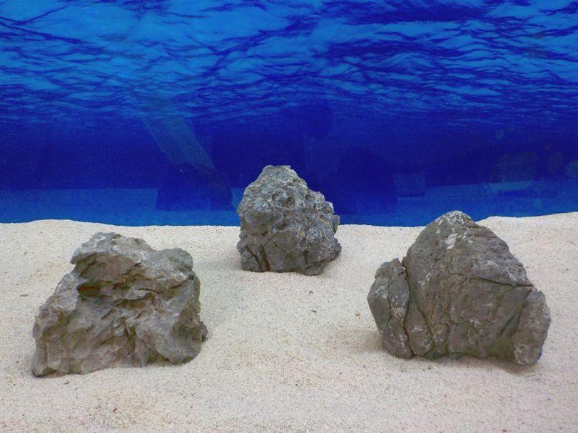 "Aquarium graue Dekosteine Seiryu Art.68 ""original Foto"" Größe L 12-35cm Nr.8264"